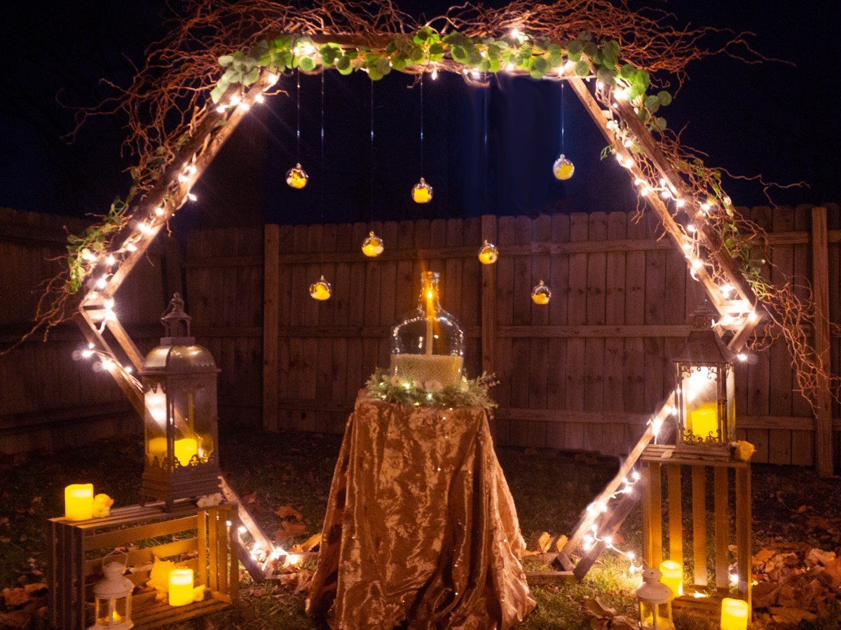 Proposal Set-Up with Lighted Curly Willow Arch